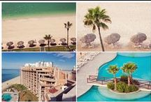 Family Fun Vacations / Great vacations made especially for families with children.  / by Gryffin