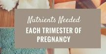 Pregnancy Fitness and Nutrition