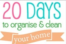 Household Tips / by Rhonda Halkowitz Green