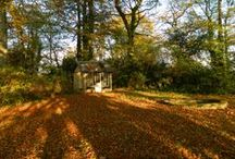 Garden / The garden at Felin Newydd House, new ideas, projects, things we like..