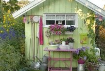The Outdoors / Cafe's, bicycles, cut dogs, windows with shutters, fields of flowers- sunflowers, lavender...