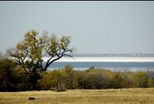 Oklahoma Travel / Travel and Fun in the Great State of Oklahoma