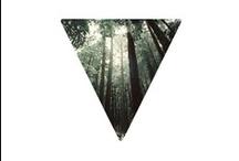 ∆ triangle