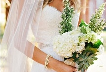 Wedding Bells / There is nothing more powerful than love. / by Samantha Jury