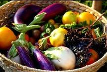 Veggies Worth Growing...and Eating! / by Bonnie Plants
