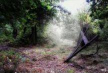 Secret Garden / by Gosia Bem