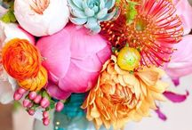 INSPIRE / Beauty, nature, color, colour, inspiration, design inspired, things that inspire me / by HELLO mynameisjodi