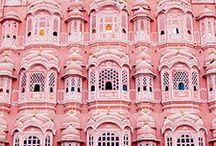 Jaipur - pink city / by Erica