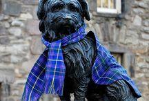 Hello Edinburgh / Edinburgh highlights: what to see and do in Edinburgh, Scotland. / by Kristen Mankosa