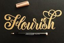 Design / Typography / by Gina