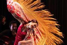 Flamenco / by Lisa Stock