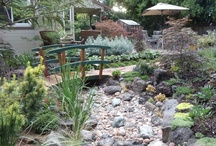 Backyard Ideas / Patio and Landscaping Ideas / by Camile Mick