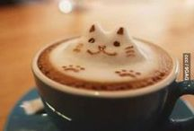 Coffee Shop Nonsense / by Birni Meyer