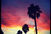 LA / by Alicia Avery