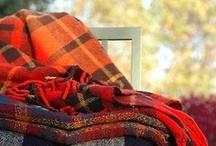 Autumn Feel / by Mrs. Roadhouse