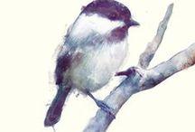 Birds / by Ariana Pérez