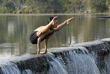 Yoga Pics / by Mayela G
