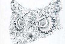 Owls / by Ariana Pérez