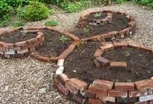 Vegetable garden /
