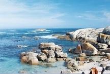 Coastal Loving