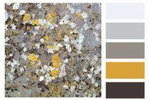 Color Palettes / by Jamie Kalvestran Design