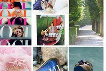 Blog Posts / Elle Cole Interiors