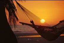 Best Beach Hammocks / Have you ever found your perfect place on the beach?  We have!  A beach hammock swaying in the breeze to the rhythm of the waves and the sounds of a steel drum band.  Now that's our definition of paradise!
