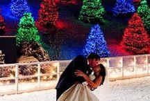 Christmas Wedding / I've always dreamed of a christmas wedding / by Kortney Dawn