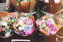 Flowers / **make me happy** / by Amanda Dove