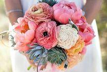 Wedding / by Emily Bergsma