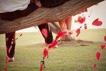 Wedding / by Erica Lorenz