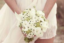 White Weddings / May 2018, 2014 winery wedding
