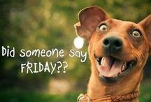 I ♥ Fridays!