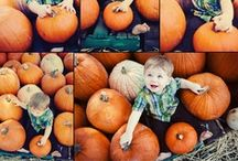 Fall Paradise / There's nothing quite like bonding with family and friends over hot chocolate and yummy pumpkin treats, savoring the feel of fallen leaves under your boots, helping the kids get decked out for Halloween, preparing for an unforgettable Thanksgiving... Isn't Fall an absolutely lovely season? :)  / by PishPosh Baby