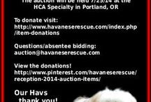 2014 - HRI's Denim and Diamonds Reception & Auction – Fundraiser / Friday, July 25, 2014 at the Havanese Club of America National Specialty in Portland, OR  http://www.pinterest.com/havaneserescue/reception-2014-auction-items/
