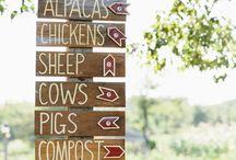 Life on the Farm / by Taylor Castleberry