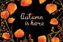 Autumn / My Favorite Time of the Year