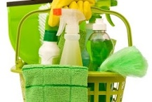 Cleaning Tips / by Susan Johnson