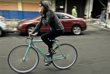 bicycle fun / Always fun to take a spin. / by Venture Out