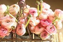 Pink Attitude!!