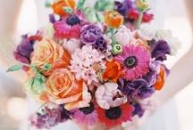 Wedding Ideas♥ / by Olive Elise Hosch