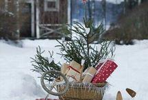 Winter / by Cyndi Jacobson