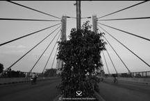 Bangalore / Satheesh Sankaran Photography