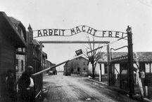 WW1 & WW2 / Human atrocities. Right here.