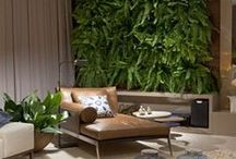 Living Walls / Some of the greatest indoor and outdoor, private and public vertical gardens.