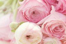::: deko für den frühling ::: / Wir dekorieren für den Frühling.
