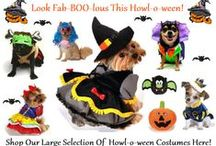 HOWL-O-WEEN Costumes / Adorable HOWL-O-WEEN Costumes For Your Pet!