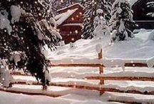 Winter / by Mary Lou