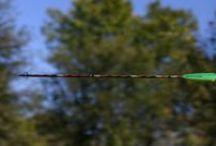 Archery / by Rod Timby