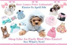 Here Comes Peter Cottontail! / Come see What's New For Easter at Puppy Love Couture.com